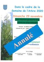 Annulation - Distribution d'arbres - 29 novembre 2020