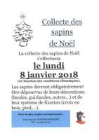 Collecte des sapins de Noël 2018