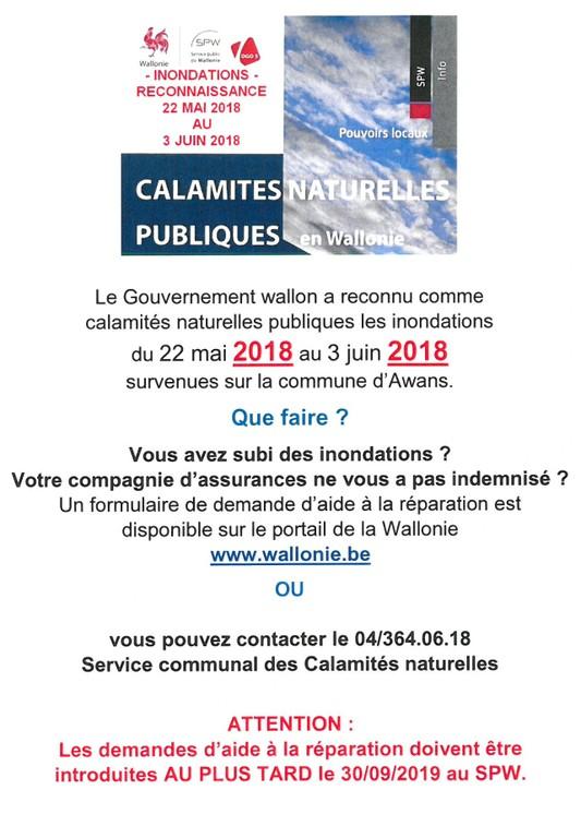 calamites 2018