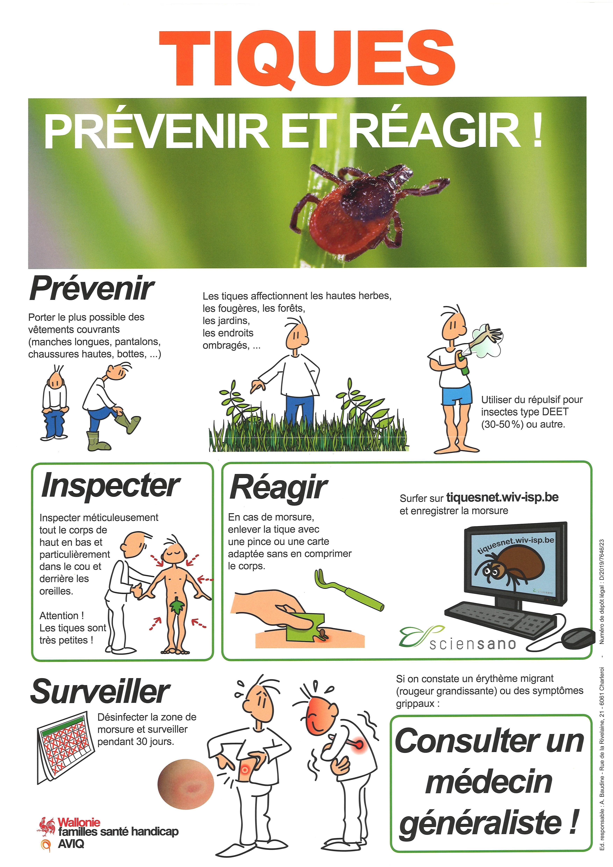 Tiques, prévenir et réagir !