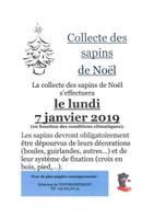 Collecte des sapins de Noël 2019
