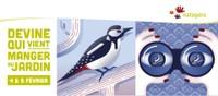 NATAGORA - Recensement des oiseaux les 3 et 4 février