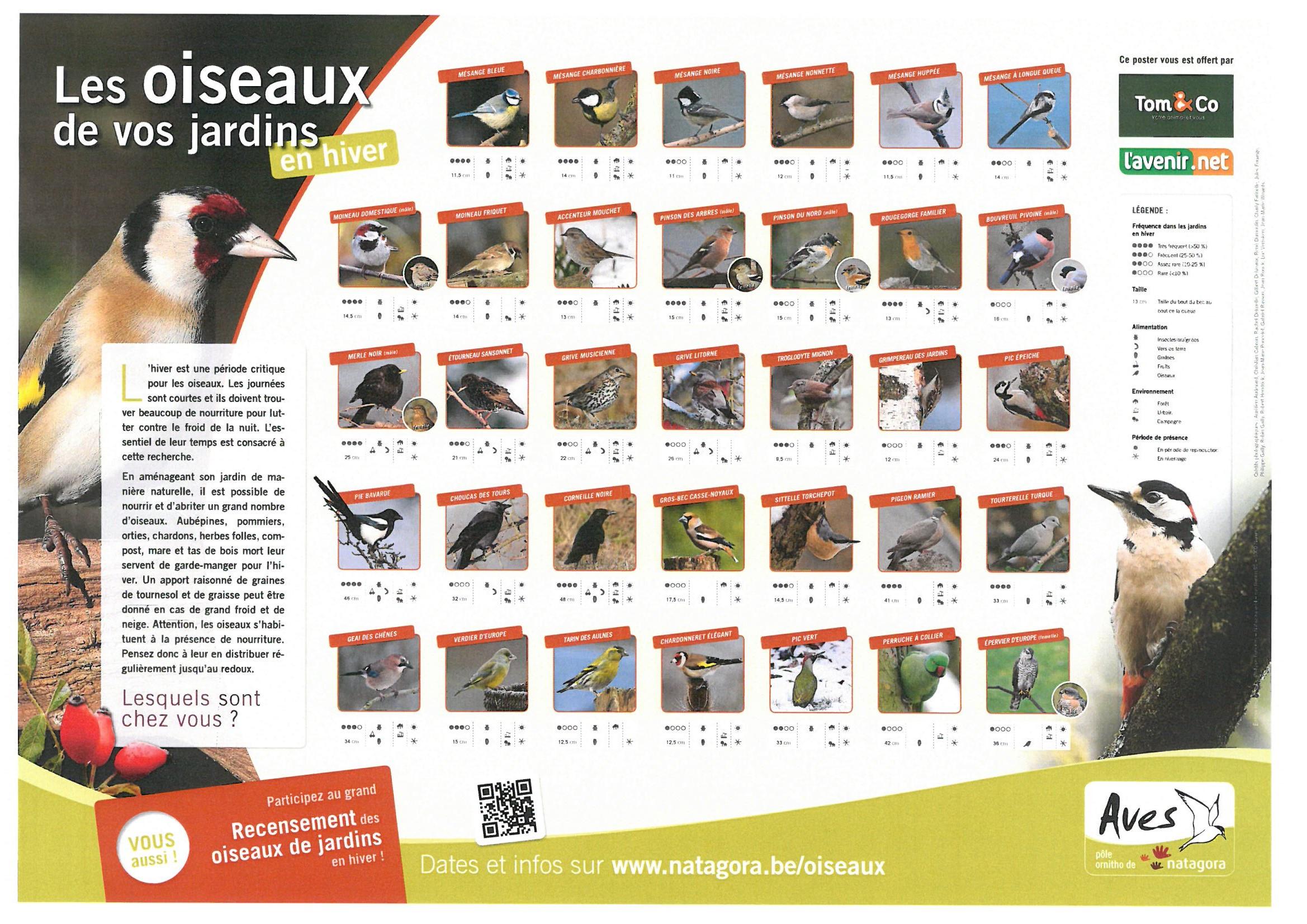 Recensement des oiseaux les 4 et 5 février